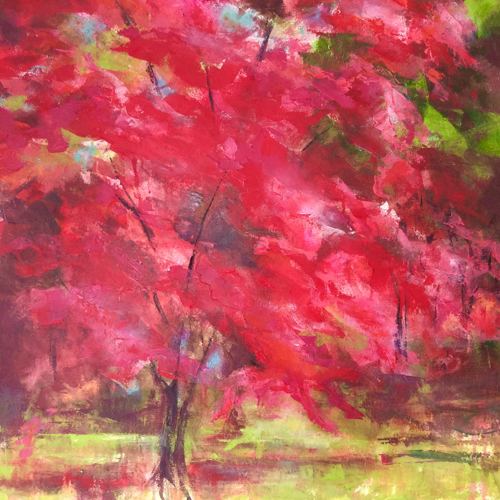 Autumn Acer by Amanda Pellatt